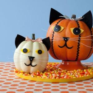 pumpkin-cat-0914_400x400_91